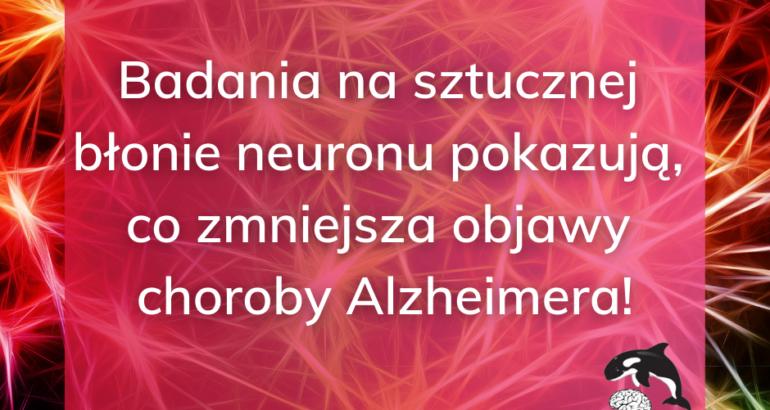 Sztuczna błona neuronu i cząsteczka K162  – nowa nadzieja na wyleczenie choroby Alzheimera