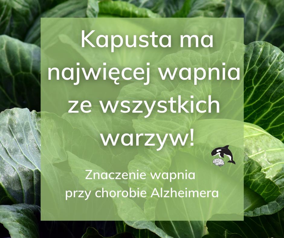 Wachania w stężeniu wapnia w organizmie mogą być odpowiedzialne za chorobę Alzheimera